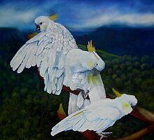 Cockatoo Lookout by Sandra  Sengstock-Miller