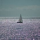 France Yacht by Chris Martin
