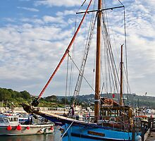 Ros-Ailither At Lyme Regis Harbour by Susie Peek