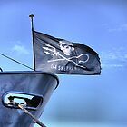 The Flag of the Sea Shepherd by Larry Lingard-Davis