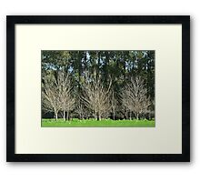 layers of green? Framed Print