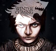 Arya Stark - Winter is Coming by rachelgeorge
