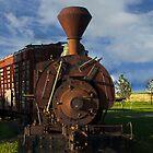 Old Prairie Train by designingjudy