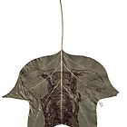The Lighther Elephant by Alephredo Muñoz