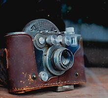 Camera in the Window by BurrowBadger