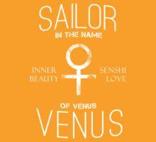 Sailor Venus by weinerdawg