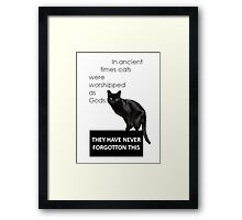 In Ancient Times Cats Were Worshipped As Gods Framed Print