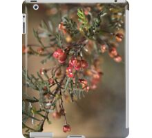Small and Unusual iPad Case/Skin