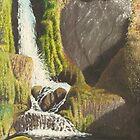 Waterfall, Knoydart by Richard Paul
