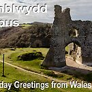 Penblwydd Hapus - Happy Birthday from Wales - Penard Castle by digihill