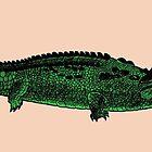 Pretzel Croc by Jason Young