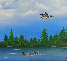 Maine Mallards by Diane M. Lowe