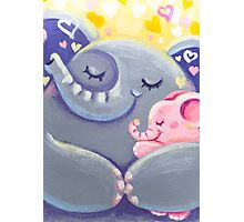 Hug - Rondy the Elphant and his Mom Photographic Print