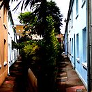 Back Street Brighton by mikebov
