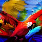 3 parrot by Cliff Vestergaard