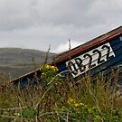 Fishing Boat, Isle of Ulva by Matthew Walters