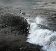 west java surf 5 by wellman