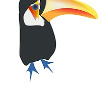 Toucan Bird by kwg2200