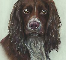 Cocker Spaniel by Jane Smith