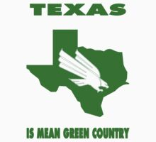NCAA North Texas Country Shirt by Plataduc