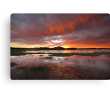 Red Catch Canvas Print