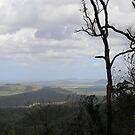 Across the mountains - Townsville by Karen Stackpole