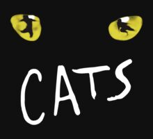 Cats Broadway Musical by ZombieWest