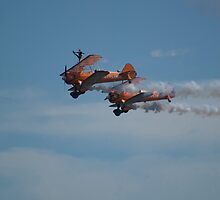 Wing Walkers by Christopher Martin