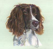 Pretty English Springer Spaniel by Jane Smith