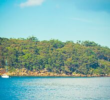 Heading to Taronga by faithie