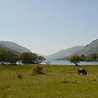 Loch Voil by Susan Dailey