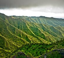 Flying High - Kalihi Valley, Honolulu, Hawaii by Silas Leger