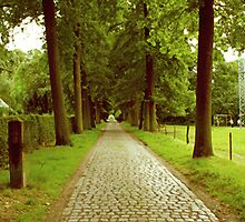 A lane to the Castle Hof ter Linden by Gilberte