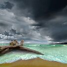 Washed Away by Igor Zenin