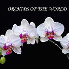 Orchids of the World by Floyd Hopper