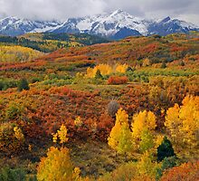 Colorful Colorado At It's Best by pilgrims492003