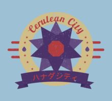 Cerulean City Gym by cassdowns