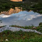 Loveland Lakes and flowers by Paul Gana