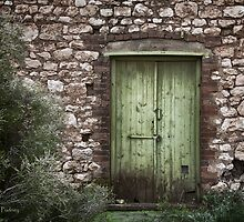 Green door by Jan Pudney