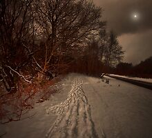 THE CHILL OF WINTER WHISPERS ON THE LAST SUMMER WINDS by leonie7
