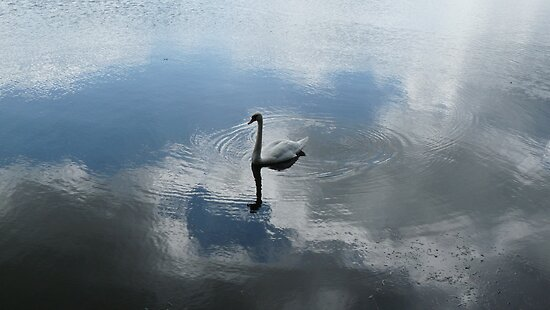 SWANLAKE by Marilyn Grimble