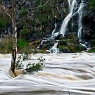 Buckey Falls by Mick Kupresanin