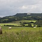 White Horse by Roger McNally