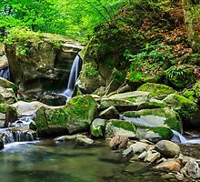 beautiful waterfall comes out of a huge rock in the forest by pellinni