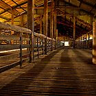 Yanga Woolshed by Chris Brunton