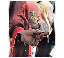 The Miniature Owl Poster