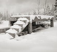 Stairs to Snow by Milo Denison