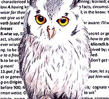Wise Old Owl by AxiomaticArt