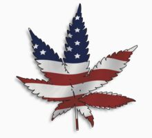 Flag Pot Leaf by TinaGraphics