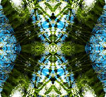 Aquatic Lace 19 by SRowe Art